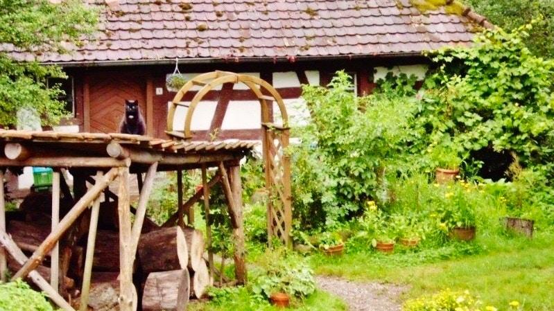 Stöckenmühle